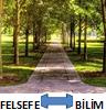 FEL-BİL